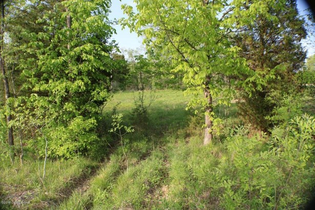 Residential Land - Leitchfield, KY (photo 4)