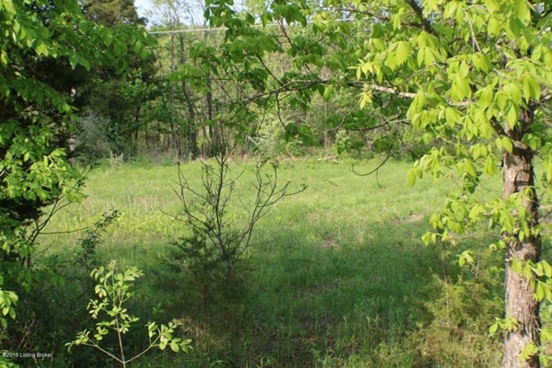 Residential Land - Leitchfield, KY (photo 5)