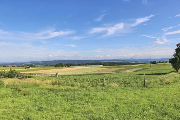 Frauenfeld - CHE (photo 5)