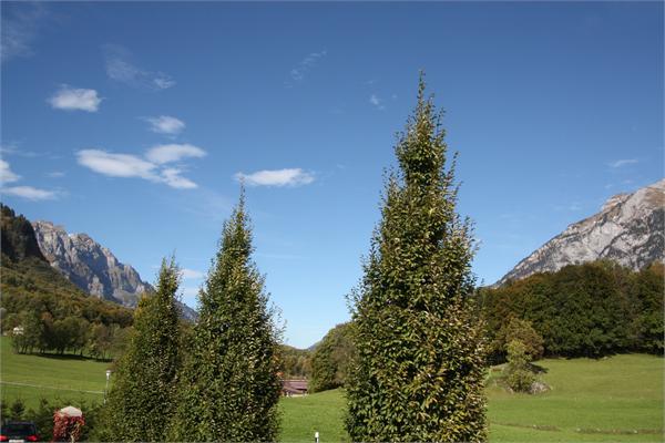 Glarus - CHE (photo 2)