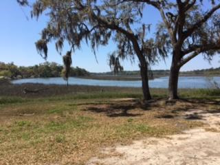 6024  Selkirk Plantation Rd , Wadmalaw Island, SC - USA (photo 2)