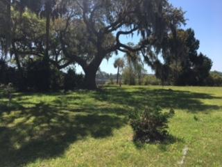6024  Selkirk Plantation Rd , Wadmalaw Island, SC - USA (photo 5)