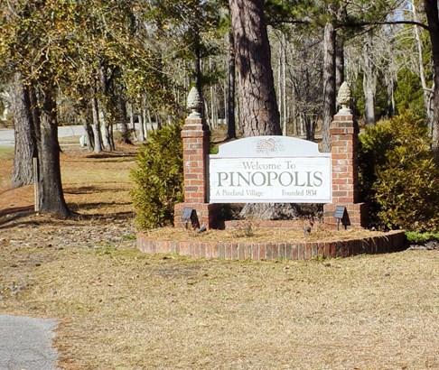 0  Pinopolis Road, Pinopolis, SC - USA (photo 2)
