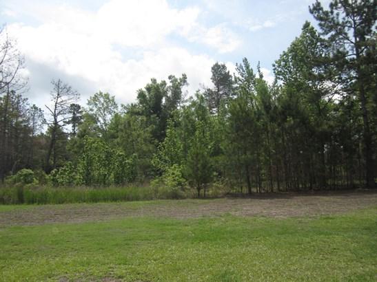 3555  Highway 45 , Pineville, SC - USA (photo 3)
