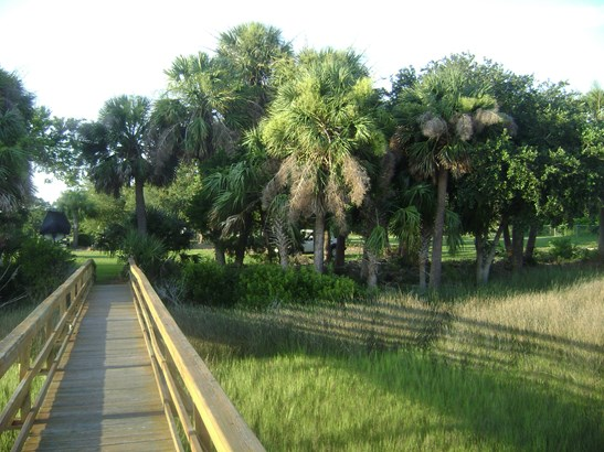 0  Ashepoo Drive, Green Pond, SC - USA (photo 5)