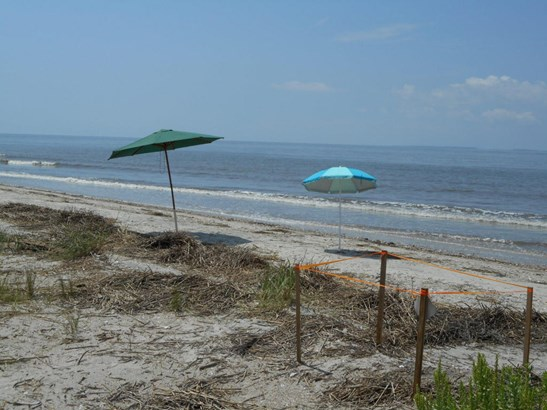 3404  Palmetto Boulevard, Edisto Island, SC - USA (photo 5)