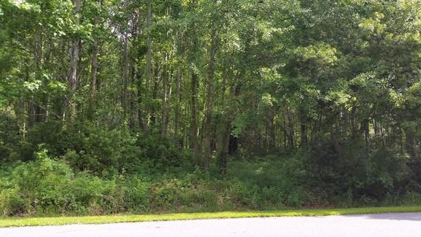 123  Cainhoy Landing Road, Wando, SC - USA (photo 2)
