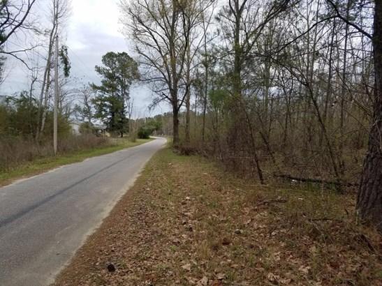 1  Gelzer Lane, Harleyville, SC - USA (photo 3)