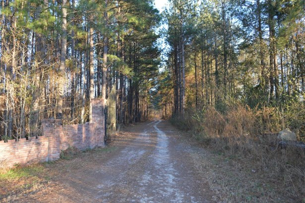 845  Target Road, Holly Hill, SC - USA (photo 2)