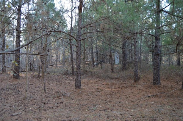 845  Target Road, Holly Hill, SC - USA (photo 5)