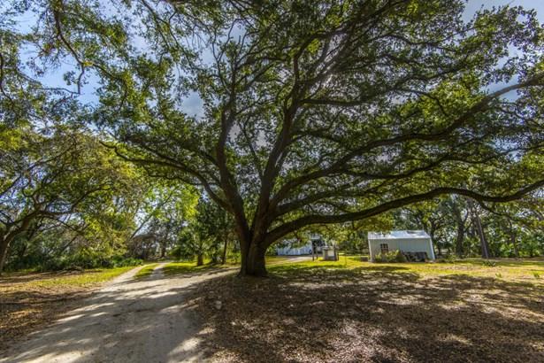 1195  Frampton Inlet Road, Edisto Island, SC - USA (photo 5)