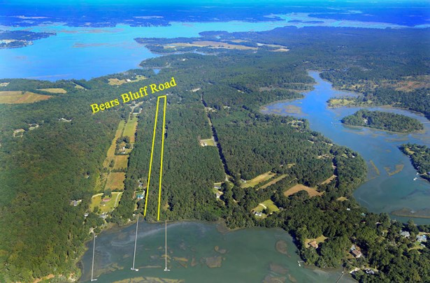 6229  Bears Bluff Road, Wadmalaw Island, SC - USA (photo 2)
