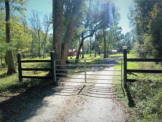 113  Nesmith Lane, Ridgeville, SC - USA (photo 1)