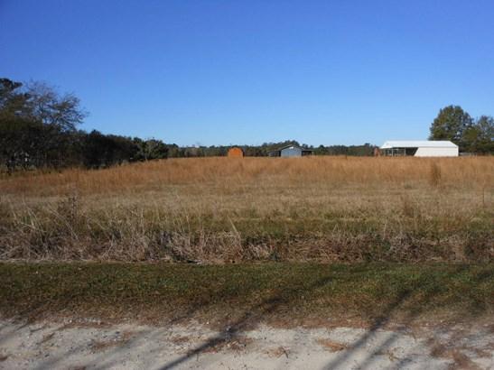 117  Woody Lane , Bonneau, SC - USA (photo 1)