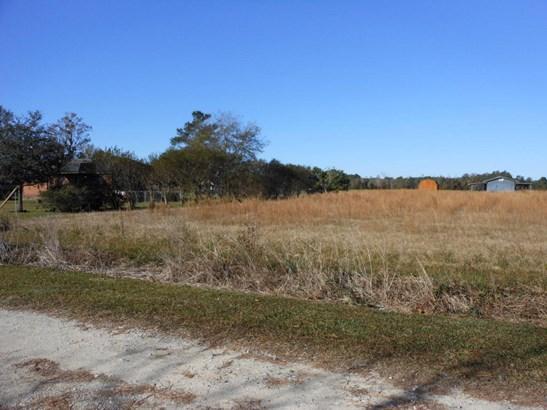 117  Woody Lane , Bonneau, SC - USA (photo 2)