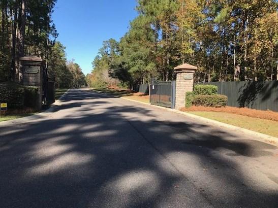 184  Ryefield Lane, Ridgeville, SC - USA (photo 3)
