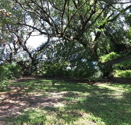 1708  Brantley Drive, Charleston, SC - USA (photo 3)