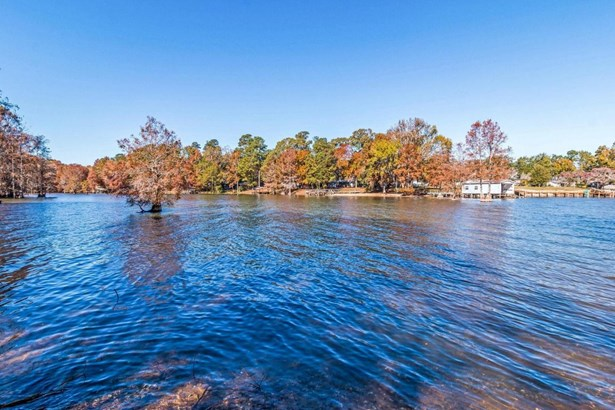 121  Lake Marion Drive, Elloree, SC - USA (photo 1)