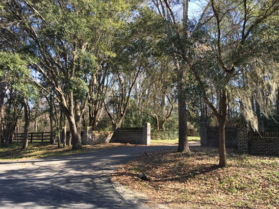 1408  Chandler Road Lot 1, Awendaw, SC - USA (photo 2)