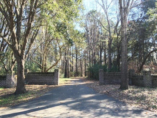 1408  Chandler Road Lot 2, Awendaw, SC - USA (photo 1)