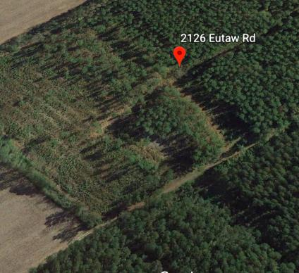 2126  Eutaw, Tract A Road, Holly Hill, SC - USA (photo 1)