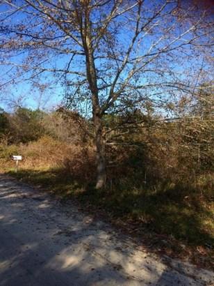 0  Bentz Road , Wadmalaw Island, SC - USA (photo 3)