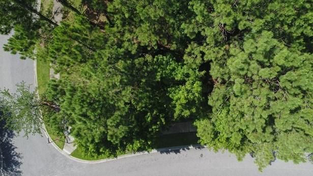 301  Gunboat Lane, Daniel Island, SC - USA (photo 4)