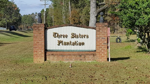 0  Marjoram Street, Ridgeville, SC - USA (photo 1)