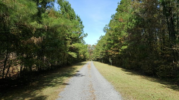 0  Marjoram Street, Ridgeville, SC - USA (photo 2)