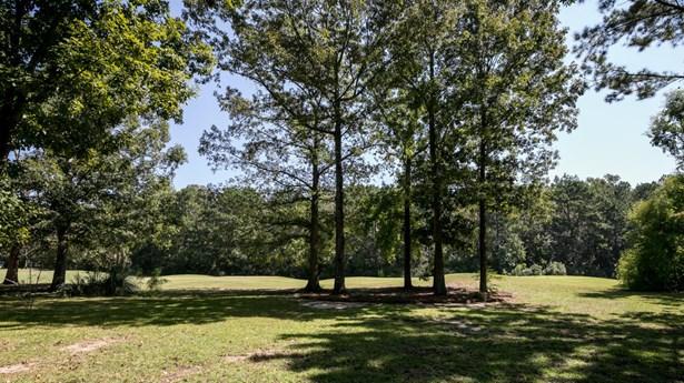 115  Waveney Circle, Goose Creek, SC - USA (photo 5)