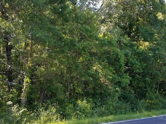 0  Lindy Creek Road, Goose Creek, SC - USA (photo 1)