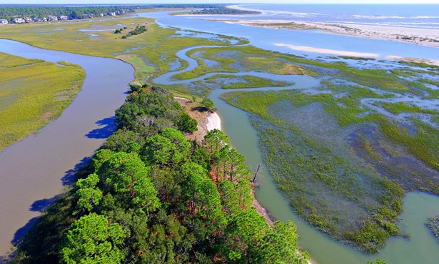 1172  Oyster Catcher Court, Seabrook Island, SC - USA (photo 1)