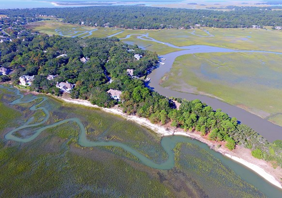 1172  Oyster Catcher Court, Seabrook Island, SC - USA (photo 4)