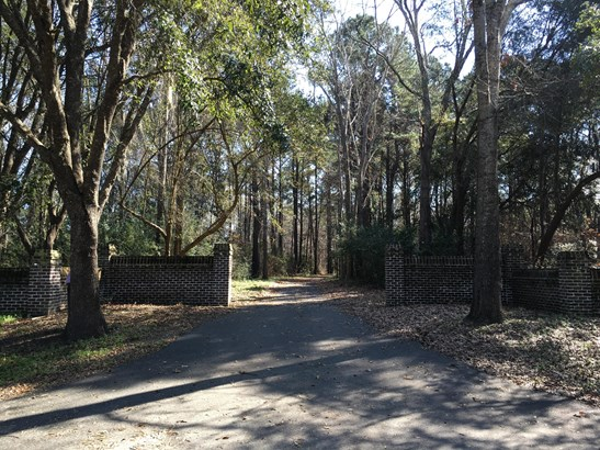 1408  Chandler Road Lot 2, Awendaw, SC - USA (photo 3)
