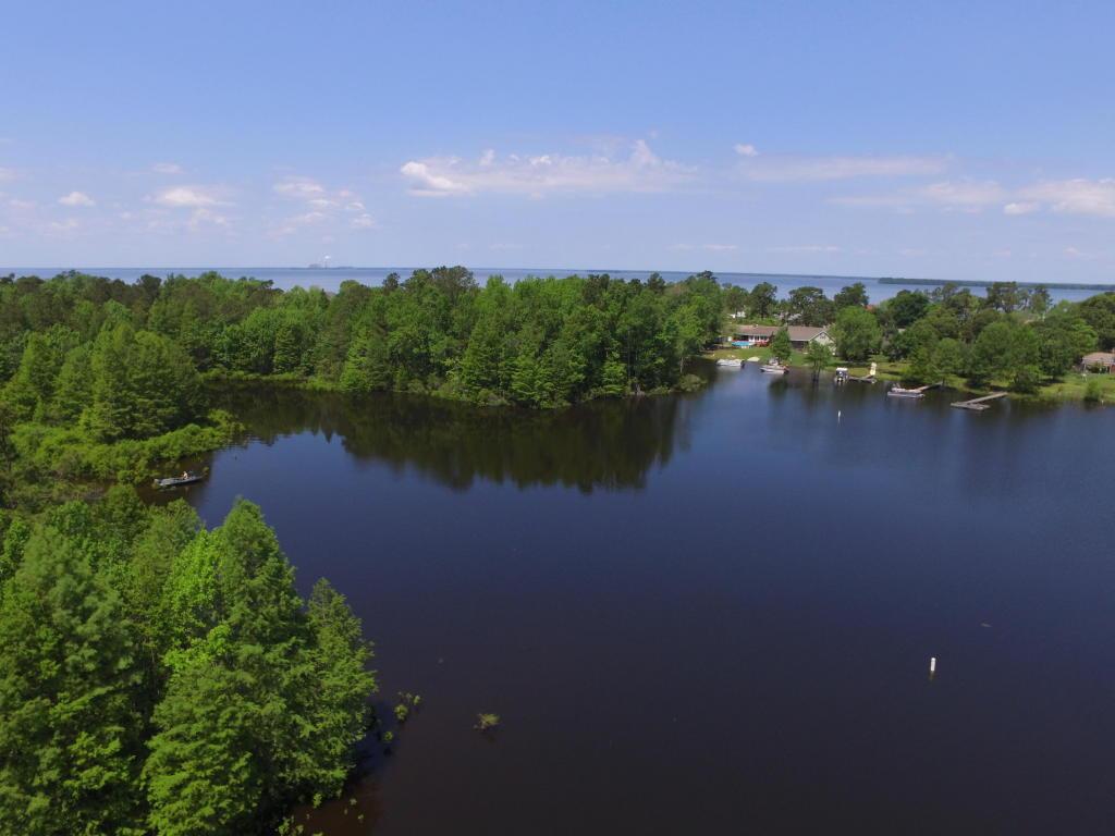 203  Lake Moultrie Drive, Bonneau, SC - USA (photo 4)