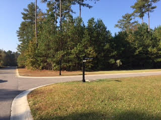 28  Satling Court, Ridgeville, SC - USA (photo 1)