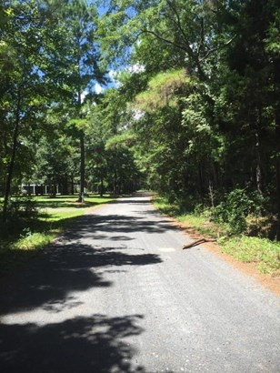 612  Romain , Mcclellanville, SC - USA (photo 3)