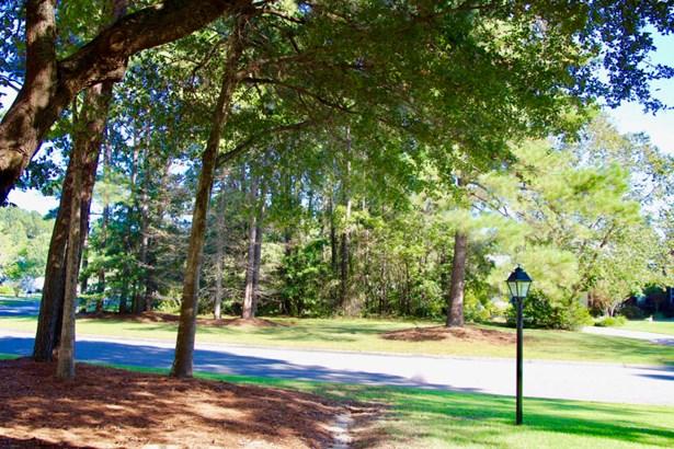 102  Bacot Lane, Goose Creek, SC - USA (photo 3)