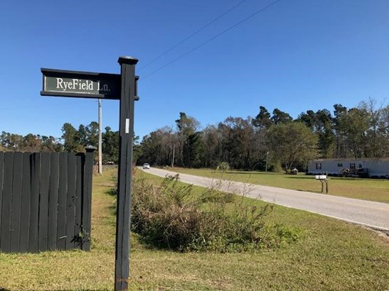 194  Ryefield Lane, Ridgeville, SC - USA (photo 4)