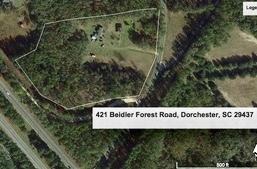 421  Beidler Forest Road, Dorchester, SC - USA (photo 1)