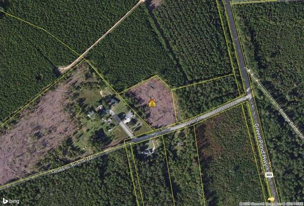 0  Cyrus Lane, Green Pond, SC - USA (photo 1)