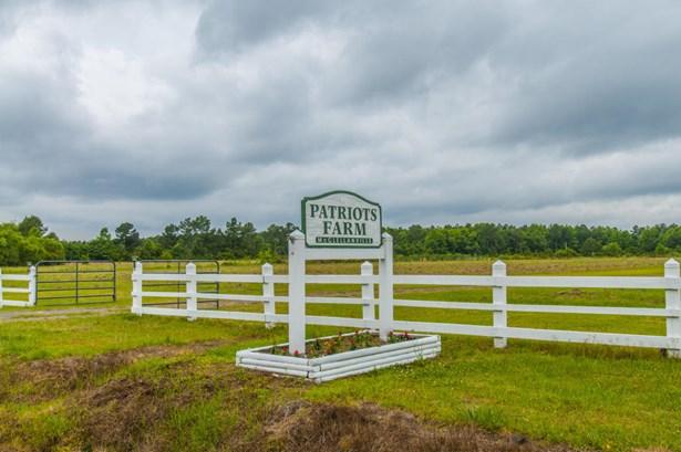 10970 N Highway 17 , Mcclellanville, SC - USA (photo 1)