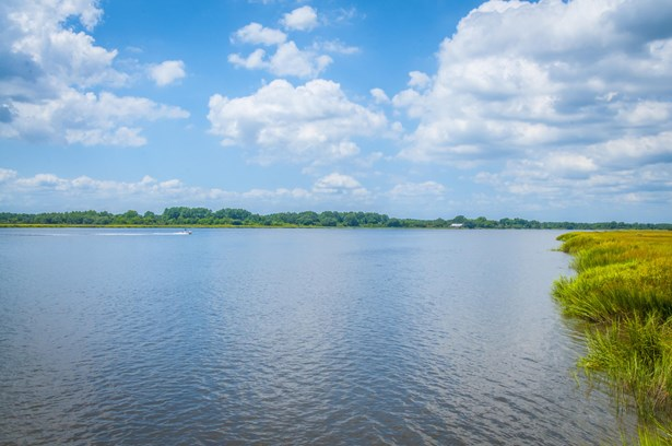 549  Island Flats Lane, Green Pond, SC - USA (photo 5)