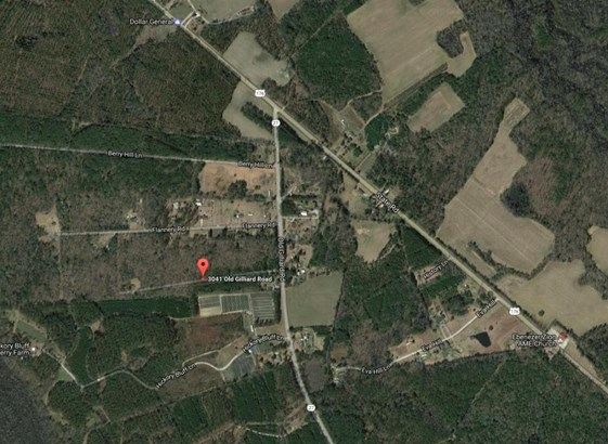 3041  Old Gilliard Road, Holly Hill, SC - USA (photo 1)