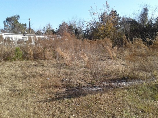 1  Alturas Lane, Eutawville, SC - USA (photo 1)