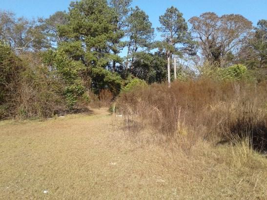 1  Alturas Lane, Eutawville, SC - USA (photo 3)