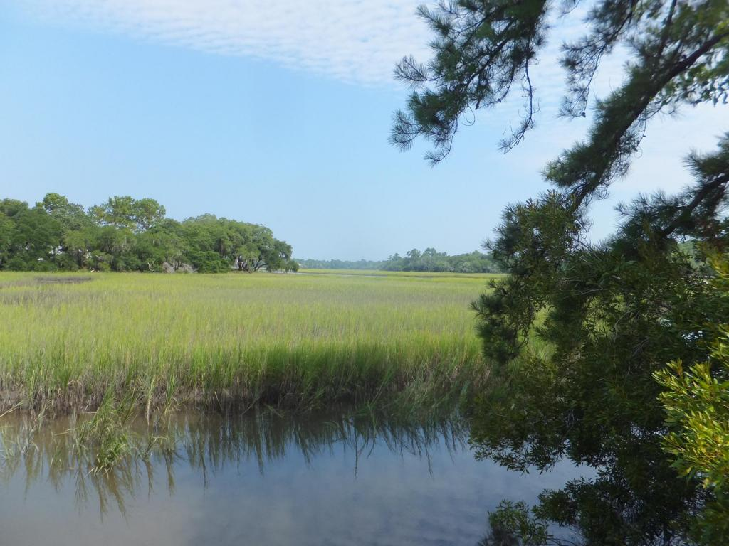 0  Bears Bluff Road, Wadmalaw Island, SC - USA (photo 5)