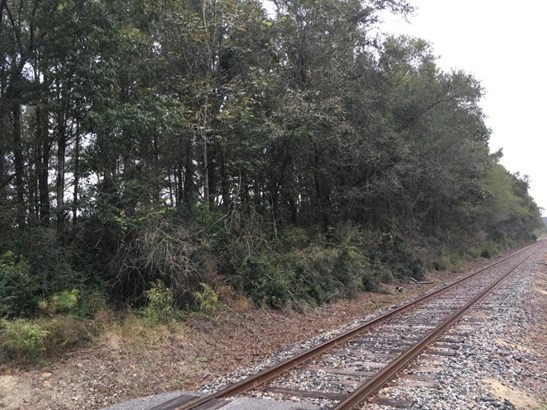 0 S Railroad Avenue, Harleyville, SC - USA (photo 4)