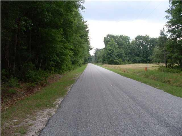 0  Edward Road, Walterboro, SC - USA (photo 2)