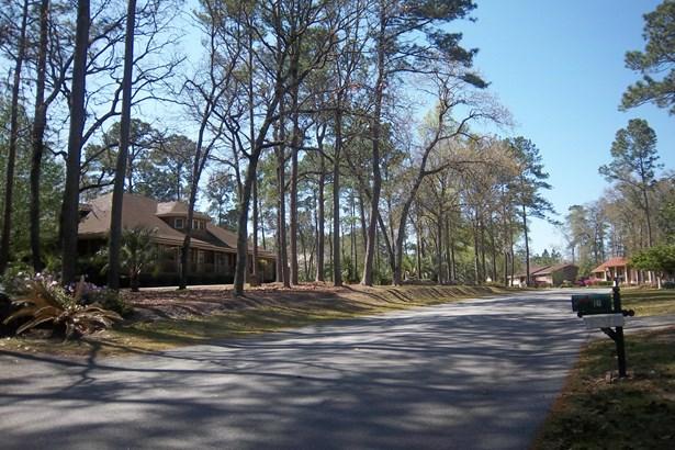 0  Wintergreen Road, Walterboro, SC - USA (photo 4)